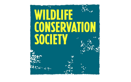 wildlife-conservation-society client logo